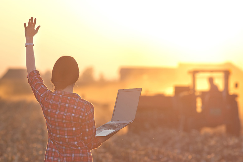 Rural Australian woman using the internet on the farm